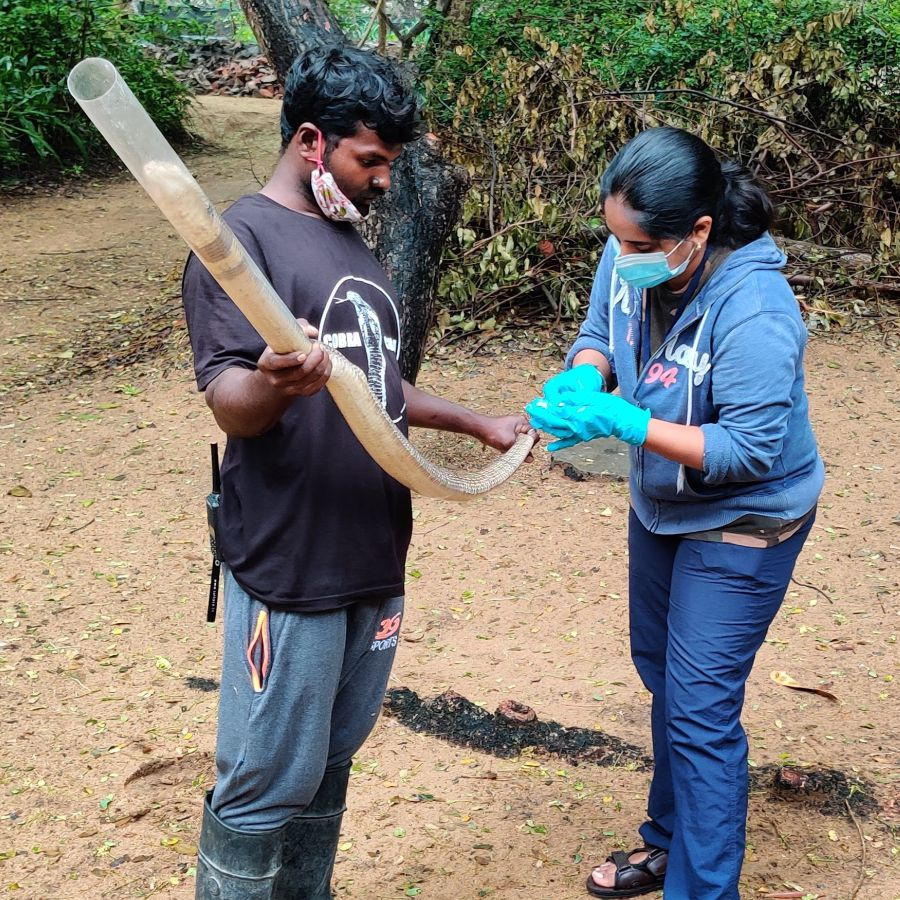 The Madras Crocodile Bank Trust & Centre for Herpetology
